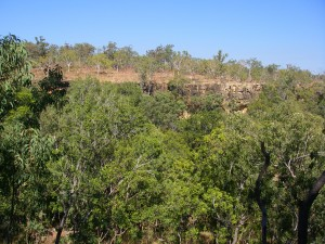 The Amphitheatre,Jatbula Trail, NT. A major site for aboriginal art.
