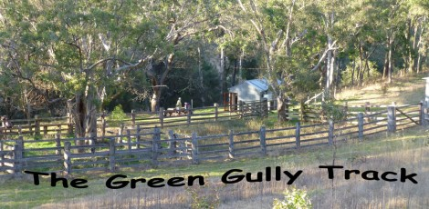 Green gully track