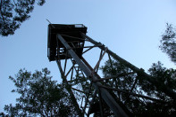 No.8 Firetower. Mt Borumba