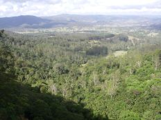 Obi Obi Valley from the falls.