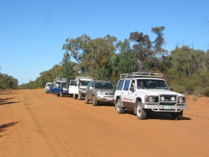 Convoy of 4WDs on park track