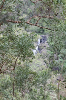 Booloumba Creek Falls