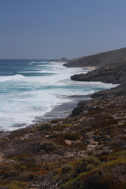 Photo Gallery: Cape to Cape Track. WA. by Lyn Hewitt.