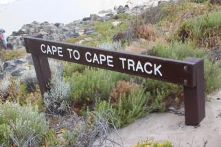 Cape to Cape Track