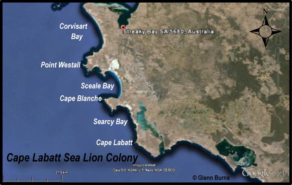 Streaky Bay Cape Labatt SA