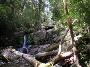Waterfall on Washpool Walk