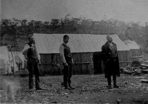 Farm Ridge 1890