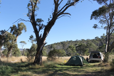 Campsite at Long Plain Hut