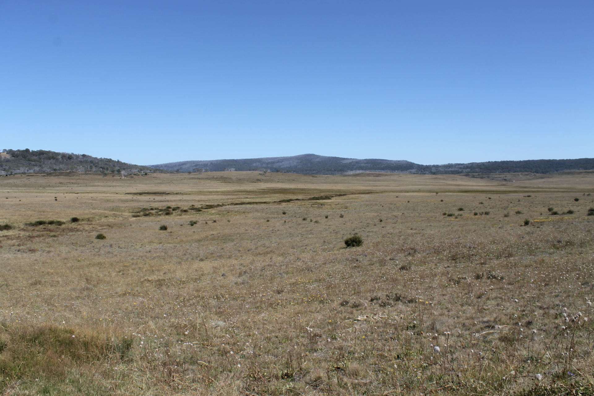 Long Plain: Northern Kosciuszko National Park. | by map ...