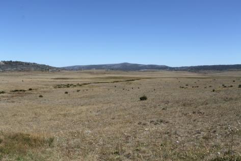 Long Plain in autumn