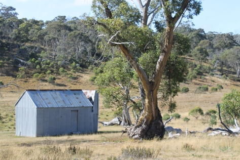 Hainsworth Hut