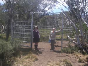 Brumby Trap on Cascade Trail