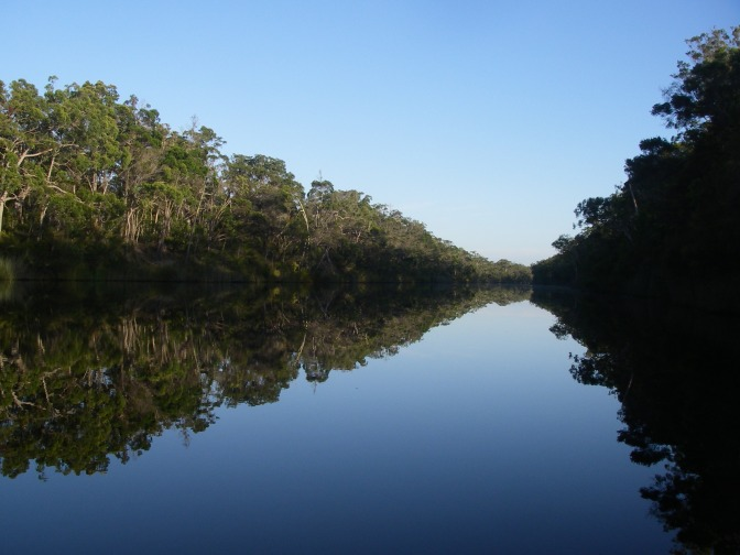 Bushwalking on Water: the Upper Noosa River