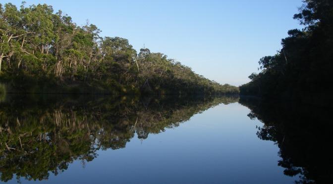 Bushwalking on Water: the Upper Noosa River