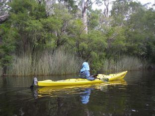 Linda's Barracuda Kayak