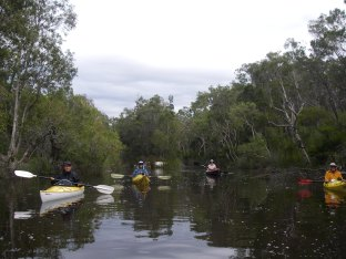 Kayaks on Upper Noosa River