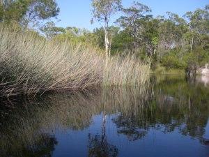 Teewah Creek