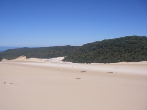 The Cooloola Sand Patch