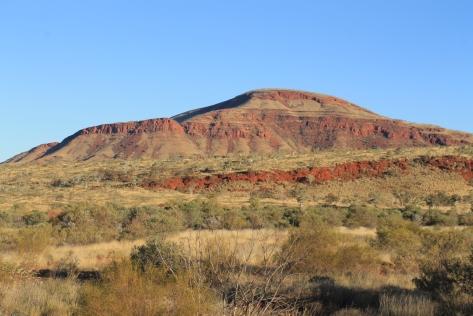 Mt Bruce:
