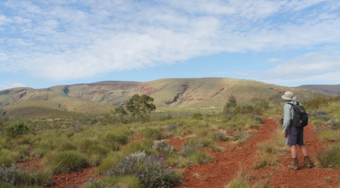 Mt Meharry: WA's Highest Mountain