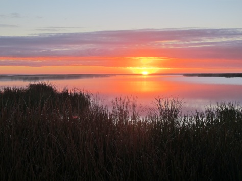Sunset at journey's end: Lake Alexandrina