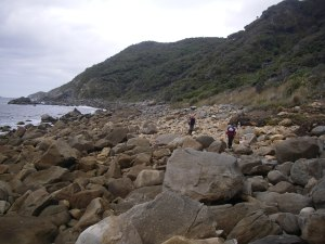 Beach walking Kiwi style.