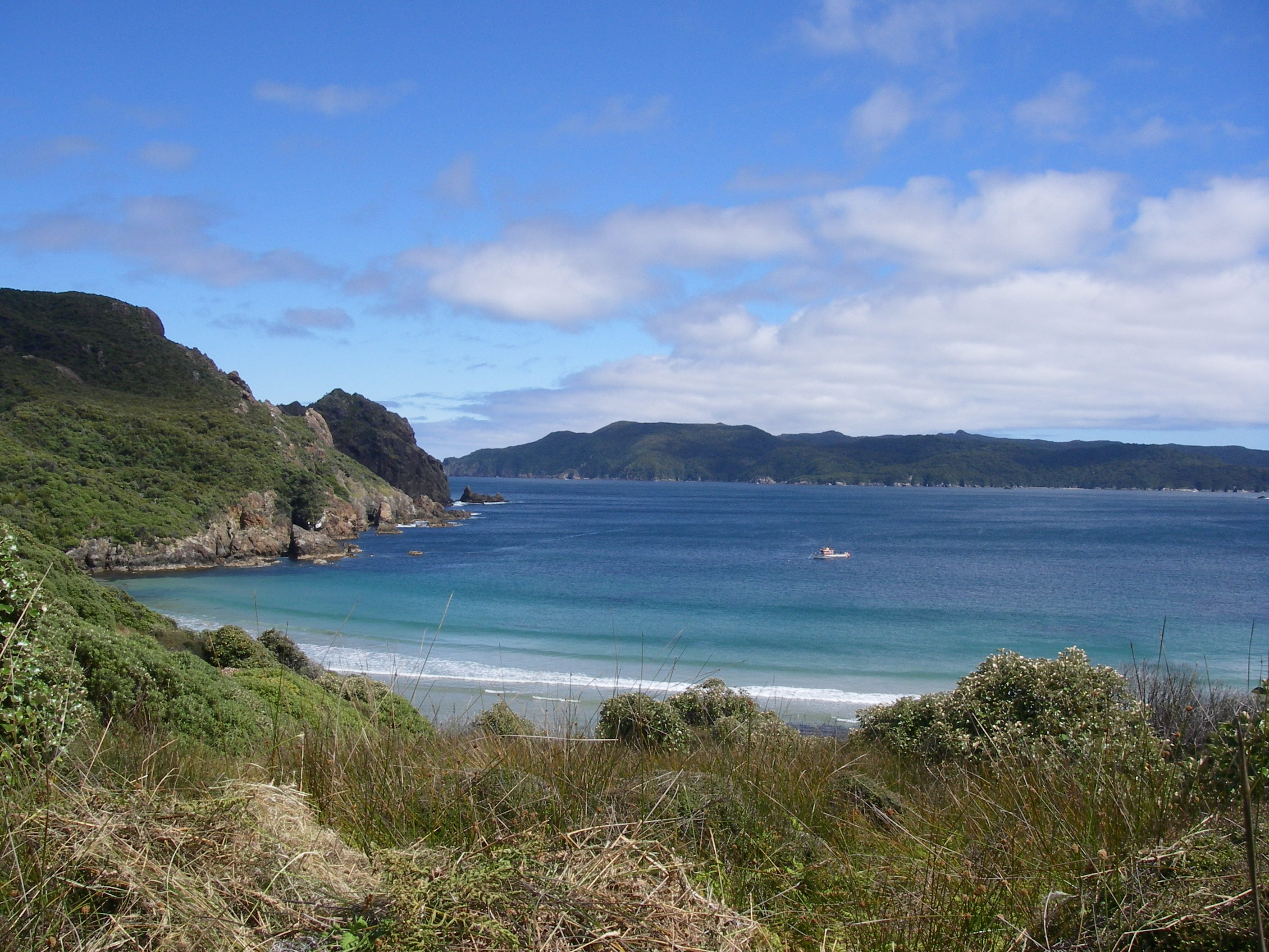 Waituna Beach