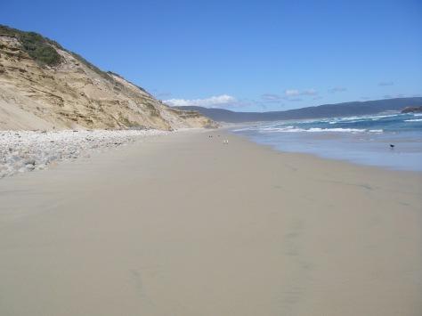 Mason Beach