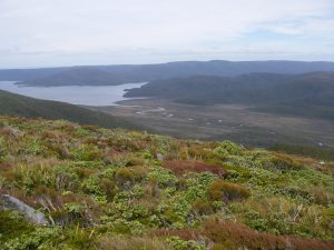 View from Rocky Mountain over Paterson Inlet