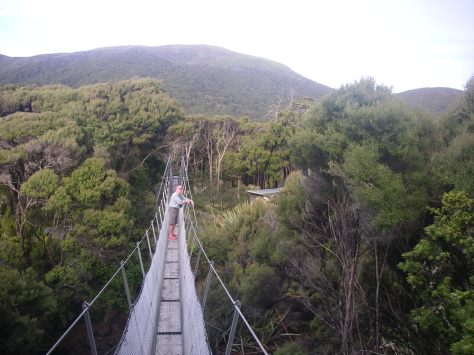 Swing bridge over Freshwater Creek