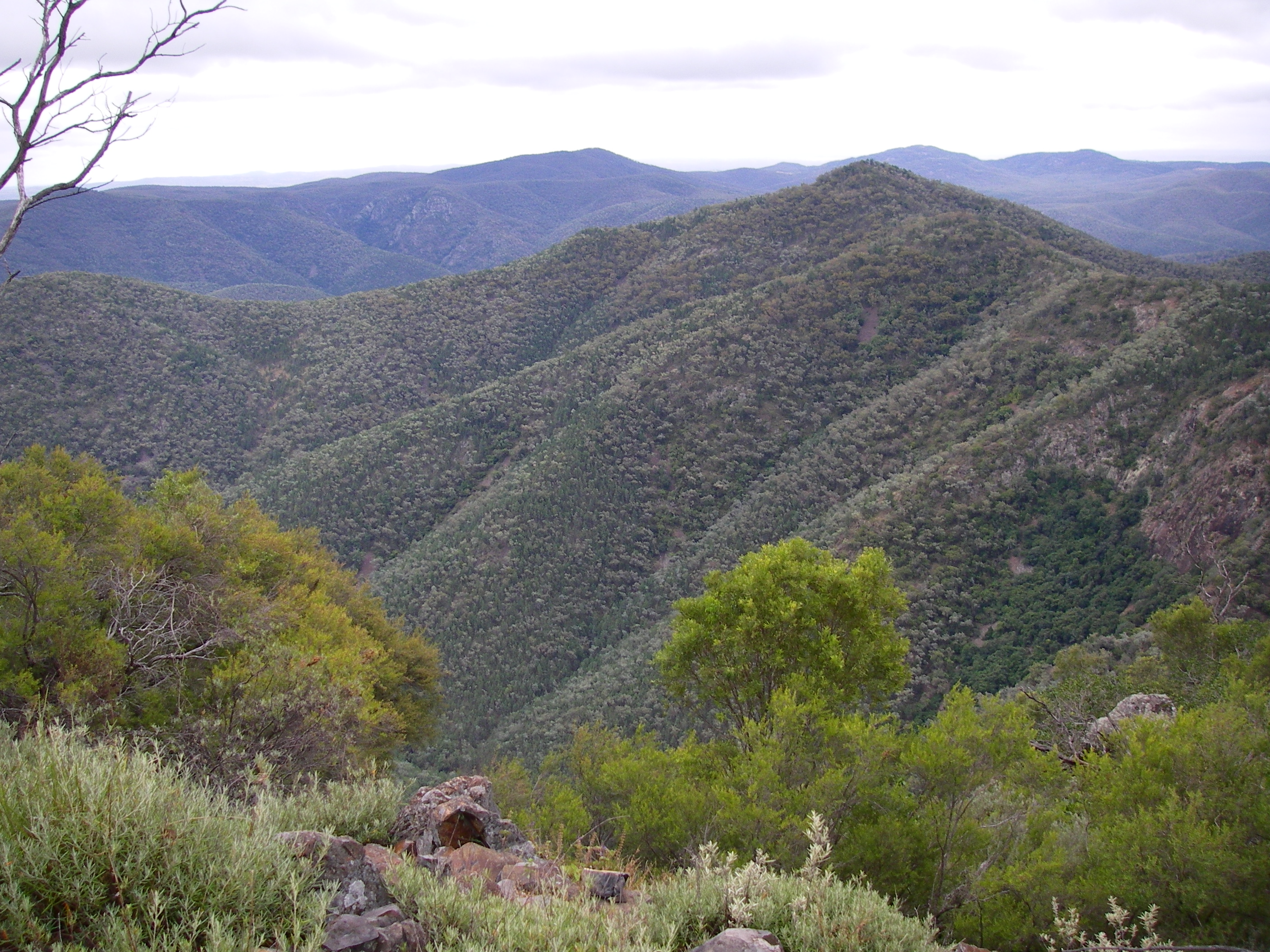 View from Mt Donaldson overlooking The Razorback
