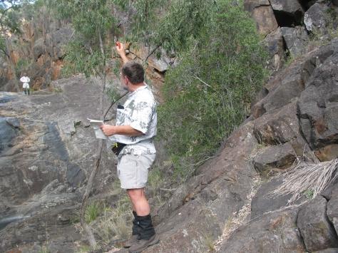 McAllister Ck Gorge