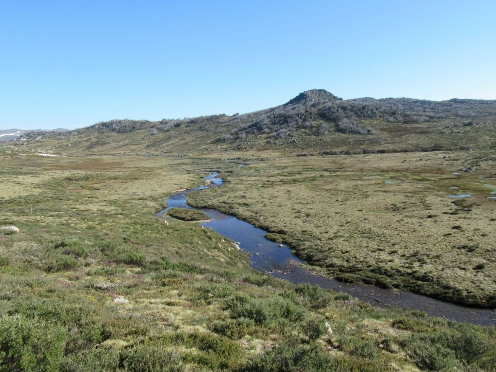 Valentine River: Kosciuszko National Park
