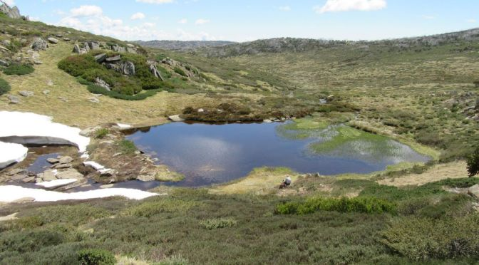 Bluff Tarn: A hike in Kosciuszko National Park