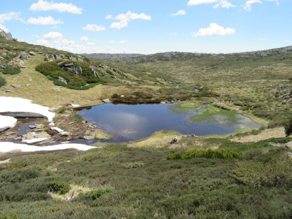 Bluff Tarn Kosciuszko National Park