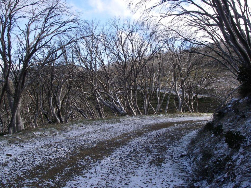 Climbing up to Schlink Pass. Kosciuszko National Park.