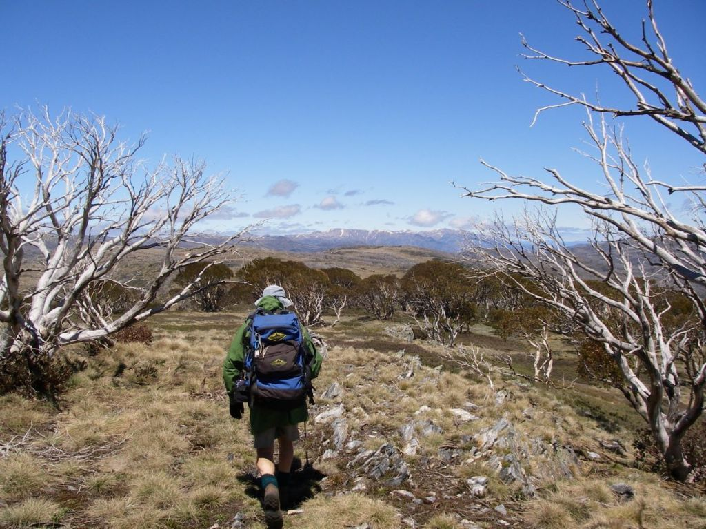 View southwards towards the Main Range and Mt Kosciuszko.