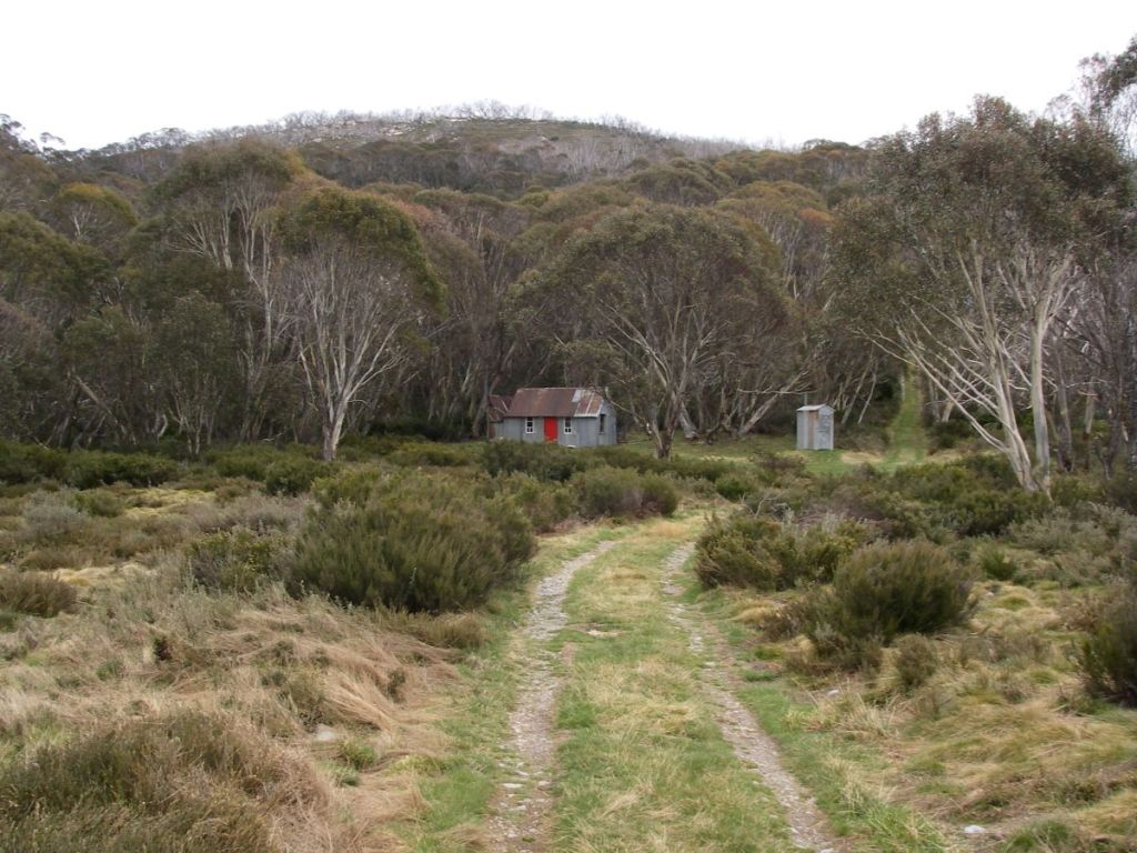 Horse Camp Hut in subalpine zone dominated by snow gum woodland
