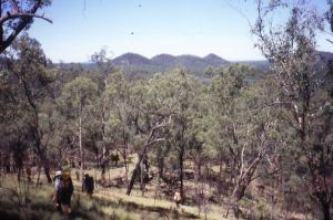 Mt Moffatt NP. Decending to Merivale River. Three Sisters in distance