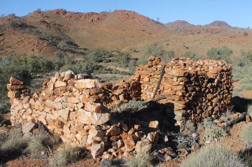 Ruins of shepherd's or miner's hut on Hamilton River. SA.