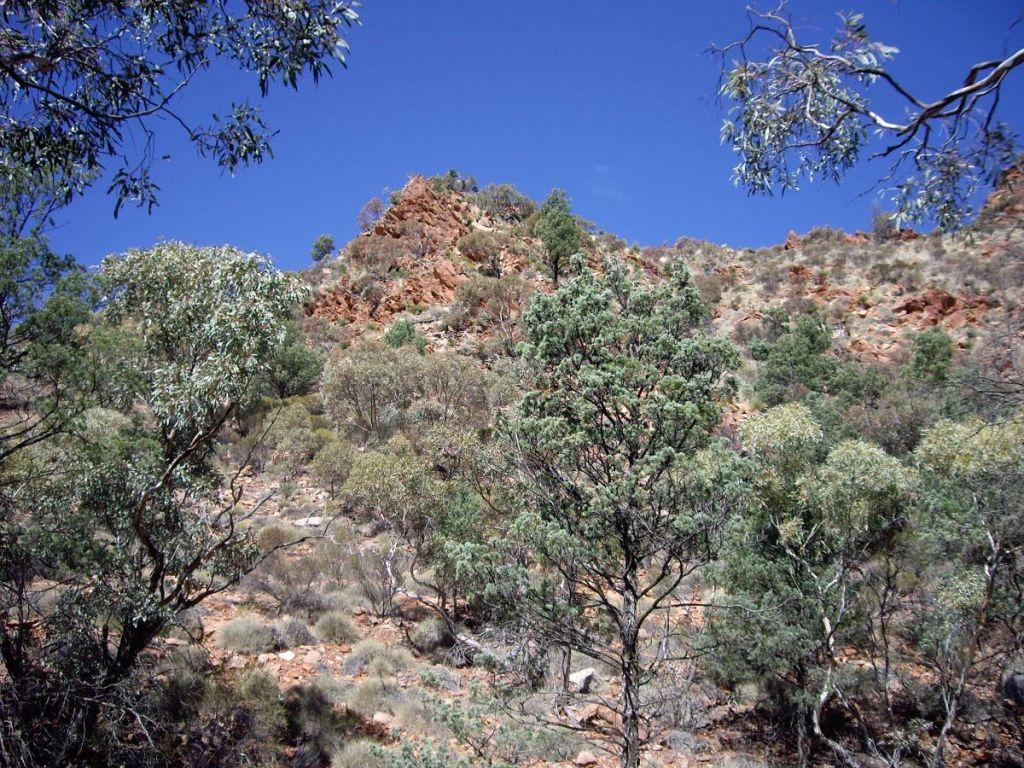 Mawson Plateau landscape.