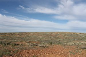 Stony Desert Plains, Mt Hopeless SA