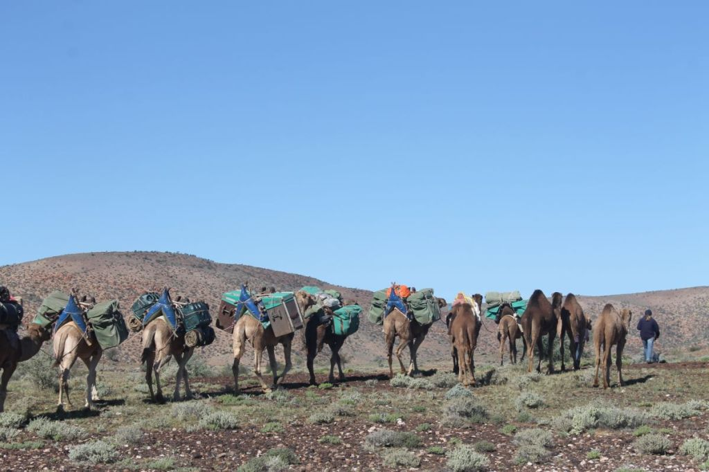 Camel String heading south from Mt Hopeless. SA
